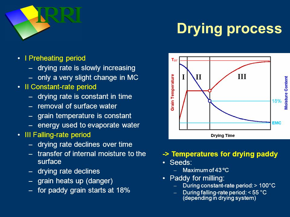 Drying rate Stated in percent moisture removed per hour Affected by: – Temperature and relative humidity of the drying air Seeds: max.
