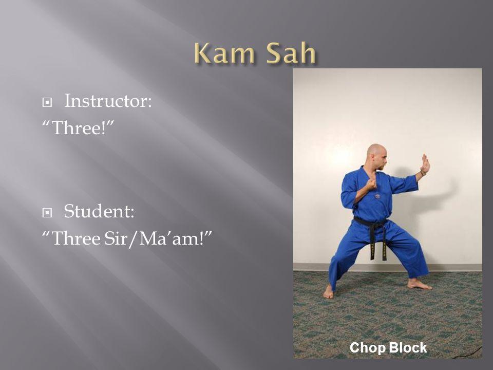  Instructor: Three!  Student: Three Sir/Ma'am! Chop Block