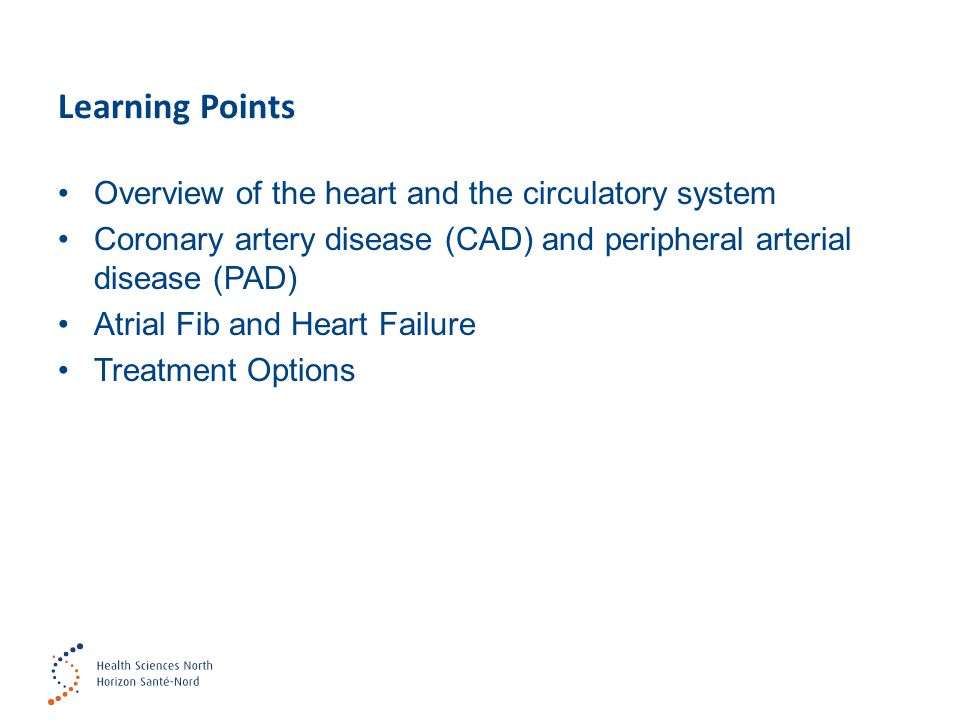 Learning Points Overview of the heart and the circulatory system Coronary artery disease (CAD) and peripheral arterial disease (PAD) Atrial Fib and Heart Failure Treatment Options