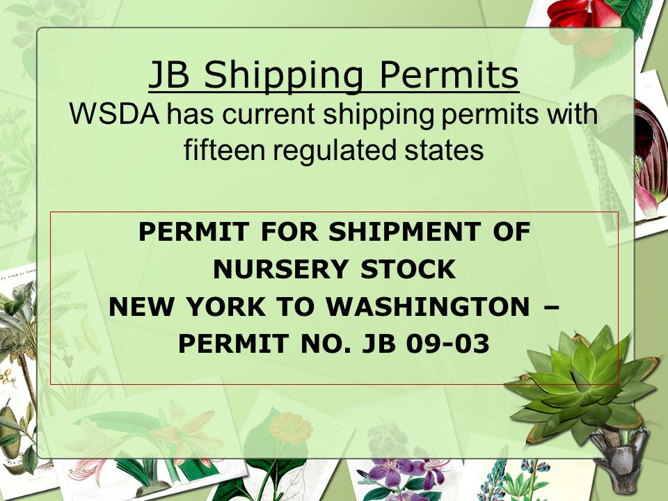 JB Shipping Permits WSDA has current shipping permits with fifteen regulated states PERMIT FOR SHIPMENT OF NURSERY STOCK NEW YORK TO WASHINGTON – PERMIT NO.
