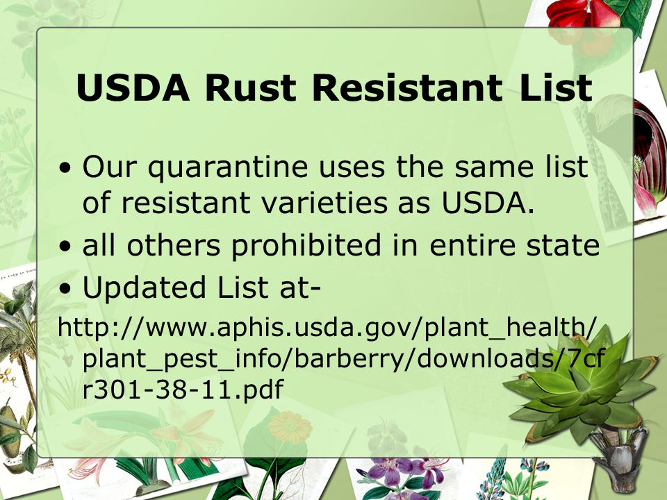 USDA Rust Resistant List Our quarantine uses the same list of resistant varieties as USDA.