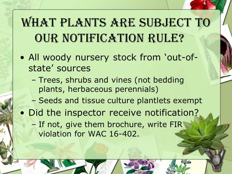 Prunus Virus Quarantines WAC 16-487 Prohibits uncertified Prunus plants and symptomless carriers.