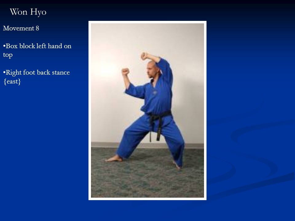 Won Hyo Movement 8 Box block left hand on top Right foot back stance {east}