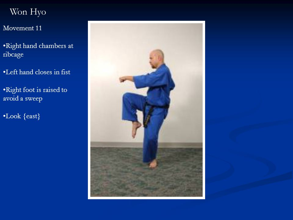 Won Hyo Movement 11 Right hand chambers at ribcage Left hand closes in fist Right foot is raised to avoid a sweep Look {east}