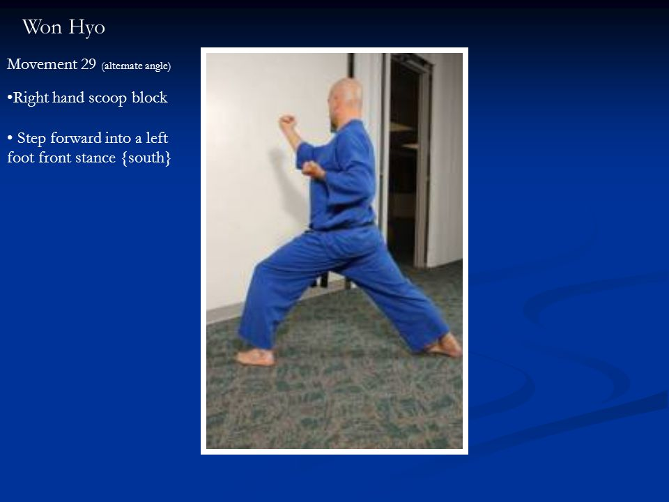 Won Hyo Movement 29 (alternate angle) Right hand scoop block Step forward into a left foot front stance {south}