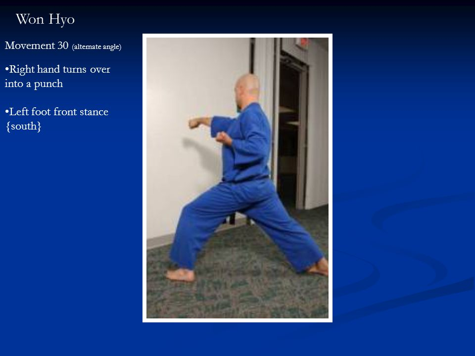 Won Hyo Movement 30 (alternate angle) Right hand turns over into a punch Left foot front stance {south}