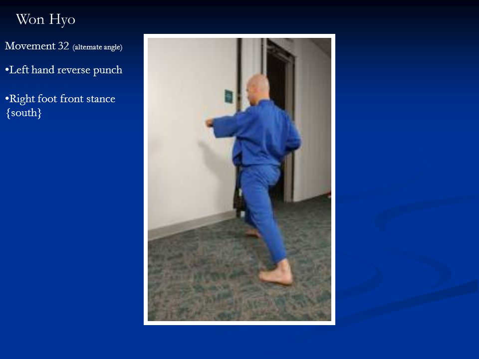 Won Hyo Movement 32 (alternate angle) Left hand reverse punch Right foot front stance {south}