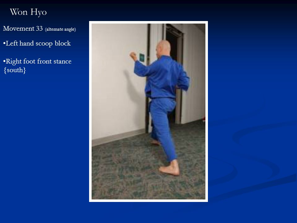 Won Hyo Movement 33 (alternate angle) Left hand scoop block Right foot front stance {south}