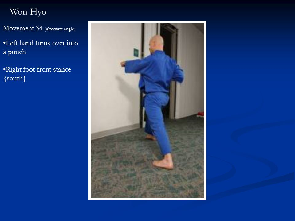 Won Hyo Movement 34 (alternate angle) Left hand turns over into a punch Right foot front stance {south}