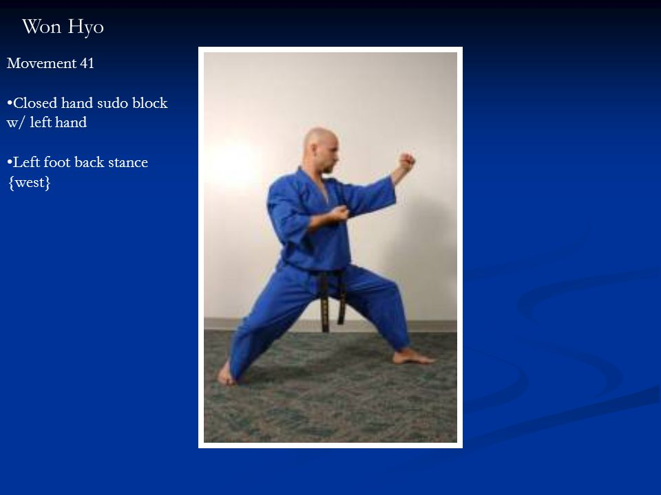 Won Hyo Movement 41 Closed hand sudo block w/ left hand Left foot back stance {west}