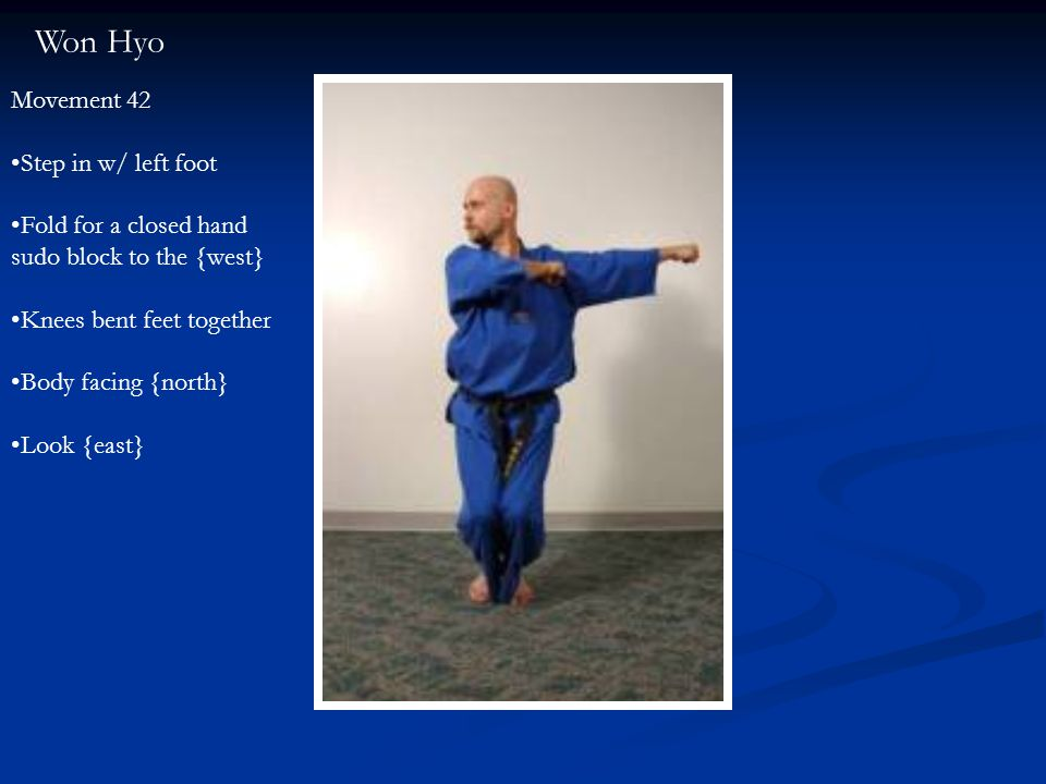 Won Hyo Movement 42 Step in w/ left foot Fold for a closed hand sudo block to the {west} Knees bent feet together Body facing {north} Look {east}