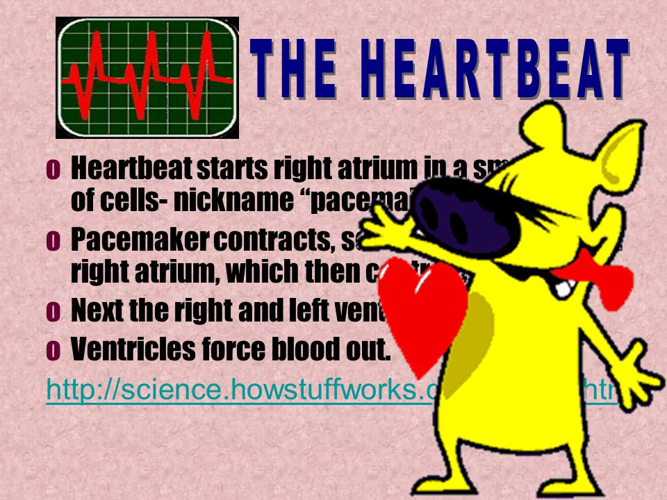 Heart beats approx.