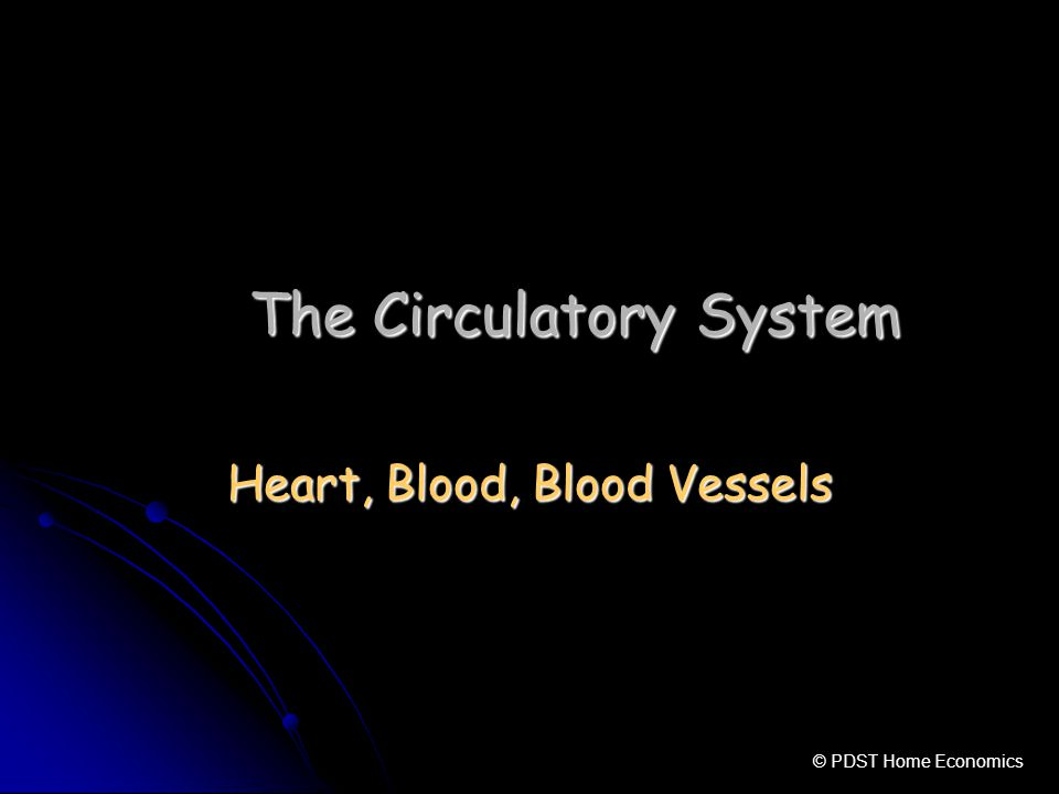 The Circulatory System Heart, Blood, Blood Vessels © PDST Home Economics