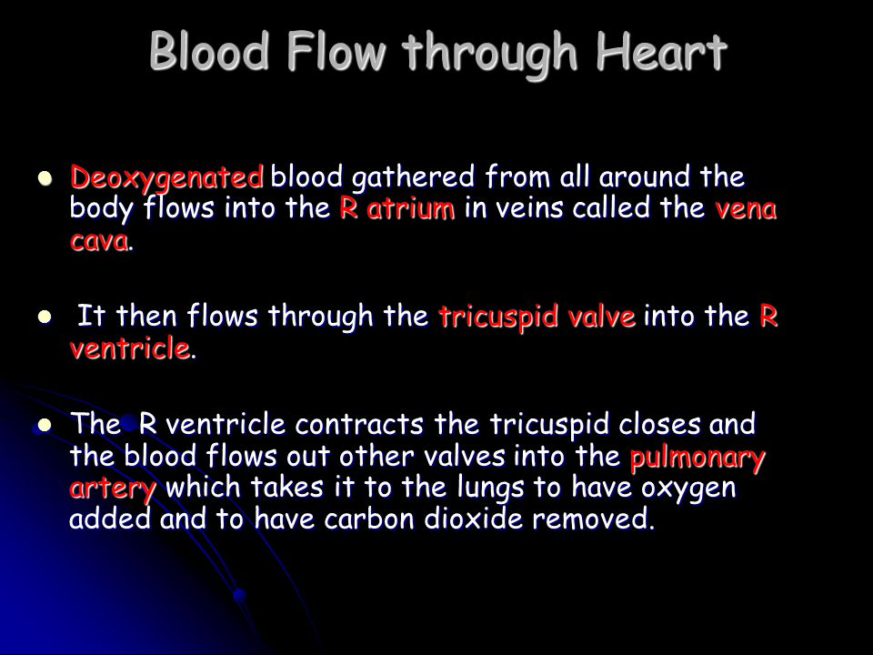 Blood Vessels Tubes that the blood flows through Tubes that the blood flows through Three types Three types Arteries, Capillaries, Veins Arteries, Capillaries, Veins