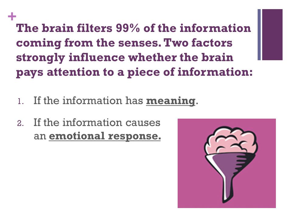 + The brain filters 99% of the information coming from the senses.