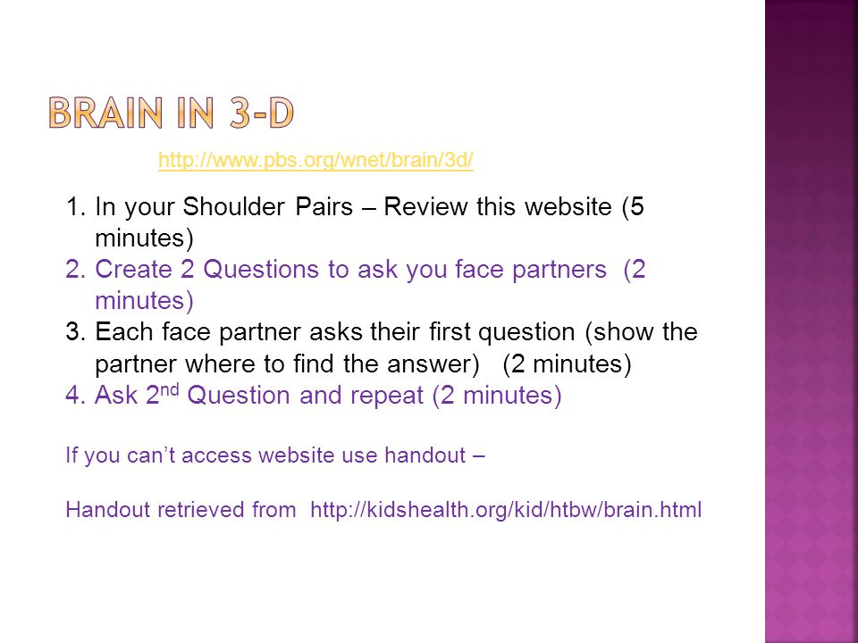 http://www.pbs.org/wnet/brain/3d/ 1.In your Shoulder Pairs – Review this website (5 minutes) 2.Create 2 Questions to ask you face partners (2 minutes) 3.Each face partner asks their first question (show the partner where to find the answer) (2 minutes) 4.Ask 2 nd Question and repeat (2 minutes) If you can't access website use handout – Handout retrieved from http://kidshealth.org/kid/htbw/brain.html