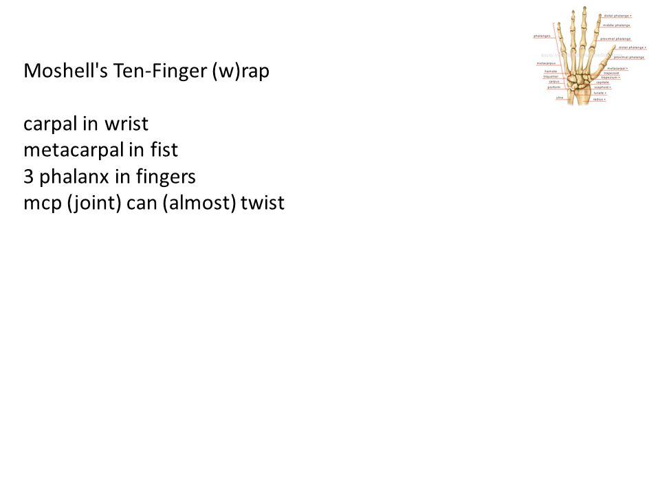 Moshell's Ten-Finger (w)rap carpal in wrist metacarpal in fist 3 phalanx in fingers mcp (joint) can (almost) twist