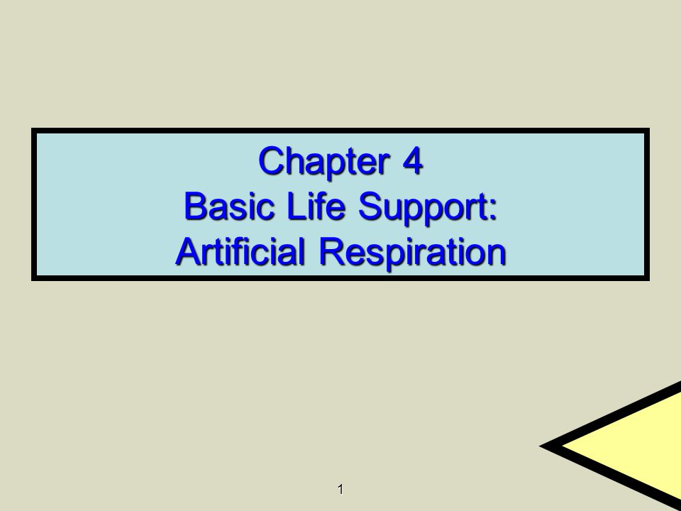 1 Chapter 4 Basic Life Support: Artificial Respiration