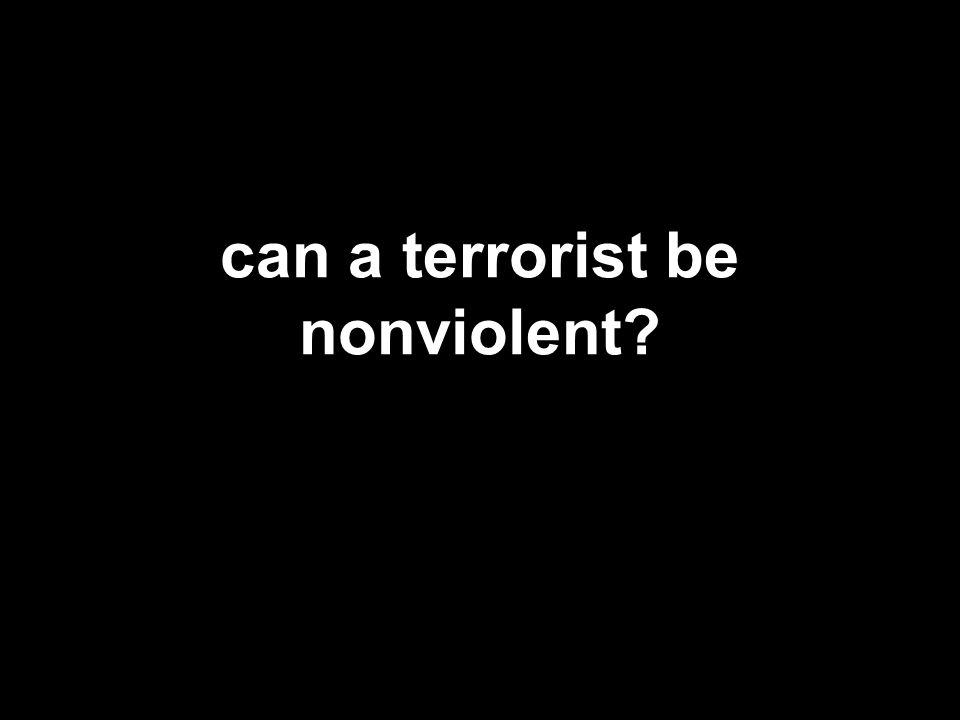 can a terrorist be nonviolent?