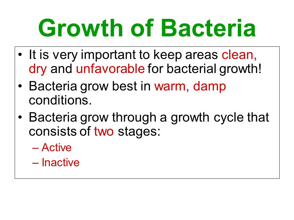 Growth of Bacteria It is very important to keep areas clean, dry and unfavorable for bacterial growth! Bacteria grow best in warm, damp conditions. Ba