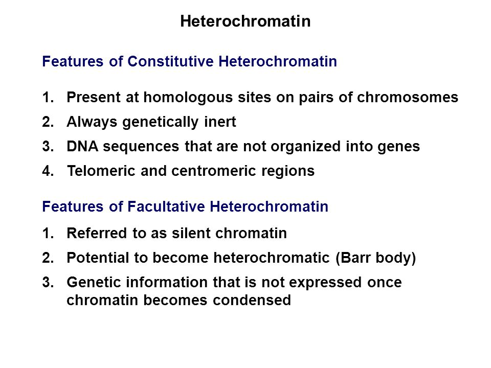 Heterochromatin Features of Constitutive Heterochromatin 1.Present at homologous sites on pairs of chromosomes 2.Always genetically inert 3.DNA sequences that are not organized into genes 4.Telomeric and centromeric regions Features of Facultative Heterochromatin 1.Referred to as silent chromatin 2.Potential to become heterochromatic (Barr body) 3.Genetic information that is not expressed once chromatin becomes condensed