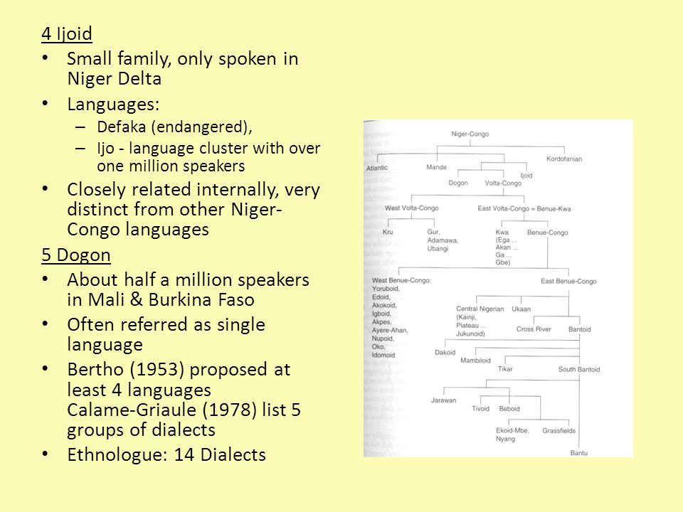4 Ijoid Small family, only spoken in Niger Delta Languages: – Defaka (endangered), – Ijo - language cluster with over one million speakers Closely related internally, very distinct from other Niger- Congo languages 5 Dogon About half a million speakers in Mali & Burkina Faso Often referred as single language Bertho (1953) proposed at least 4 languages Calame-Griaule (1978) list 5 groups of dialects Ethnologue: 14 Dialects