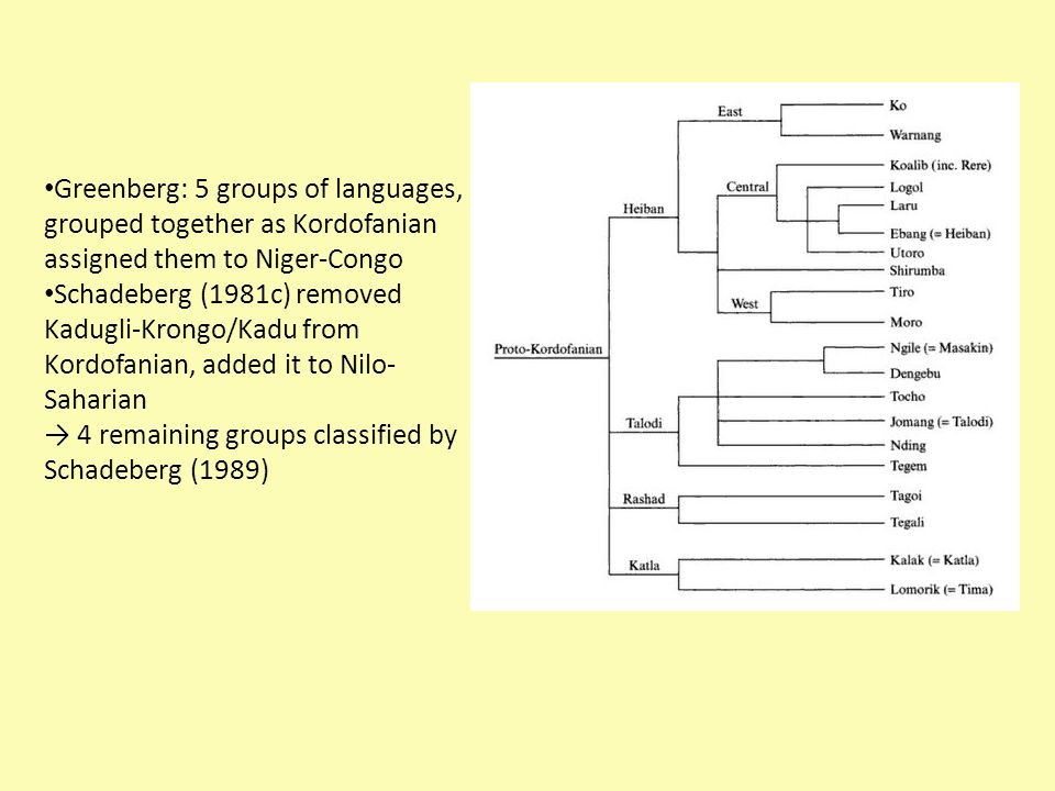 Greenberg: 5 groups of languages, grouped together as Kordofanian assigned them to Niger-Congo Schadeberg (1981c) removed Kadugli-Krongo/Kadu from Kordofanian, added it to Nilo- Saharian → 4 remaining groups classified by Schadeberg (1989)