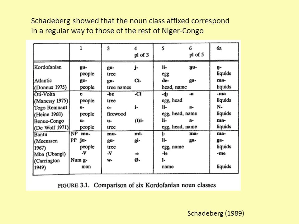 Schadeberg (1989) Schadeberg showed that the noun class affixed correspond in a regular way to those of the rest of Niger-Congo