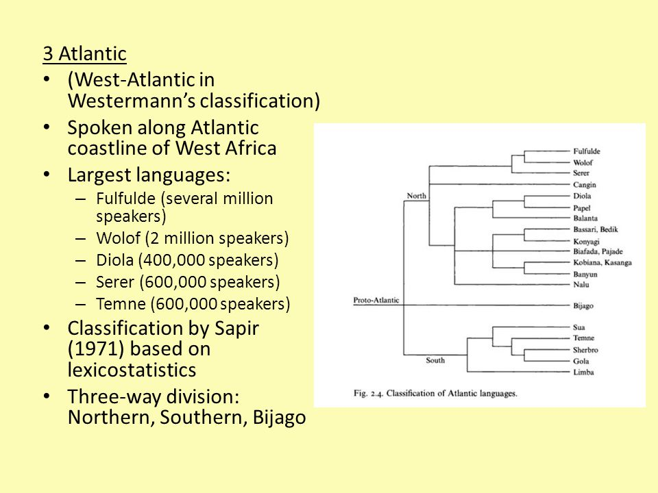 3 Atlantic (West-Atlantic in Westermann's classification) Spoken along Atlantic coastline of West Africa Largest languages: – Fulfulde (several million speakers) – Wolof (2 million speakers) – Diola (400,000 speakers) – Serer (600,000 speakers) – Temne (600,000 speakers) Classification by Sapir (1971) based on lexicostatistics Three-way division: Northern, Southern, Bijago