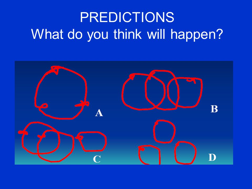 PREDICTIONS What do you think will happen