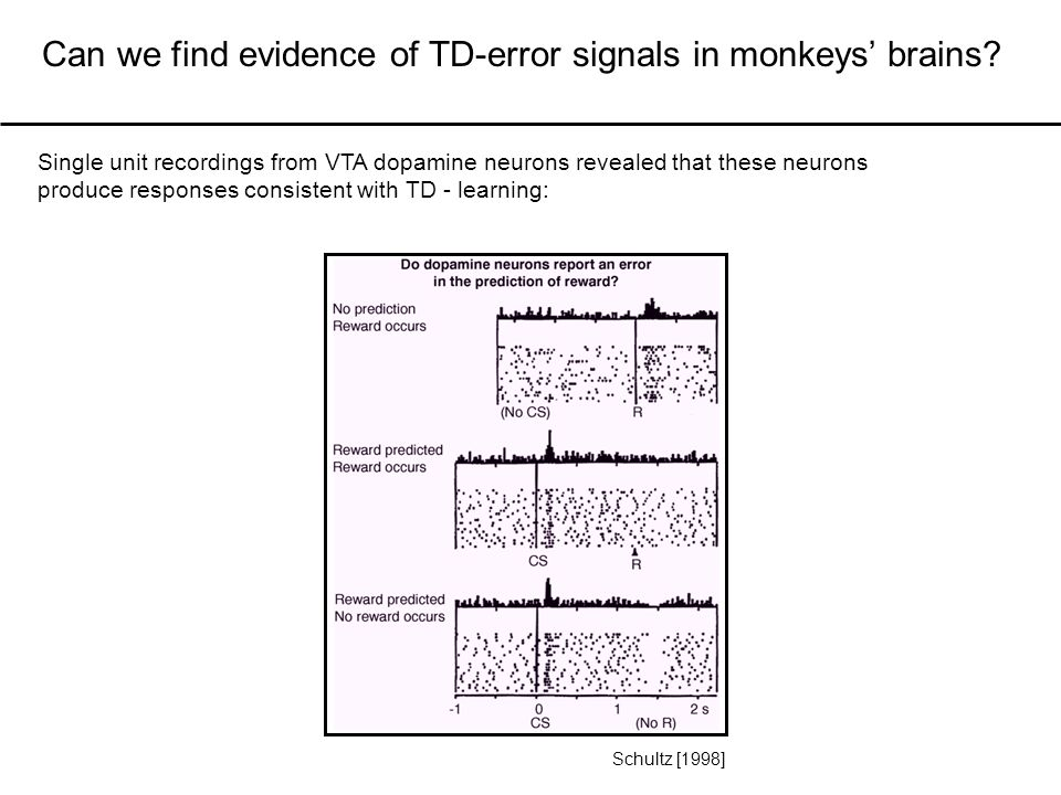 Single unit recordings from VTA dopamine neurons revealed that these neurons produce responses consistent with TD - learning: Can we find evidence of TD-error signals in monkeys' brains.