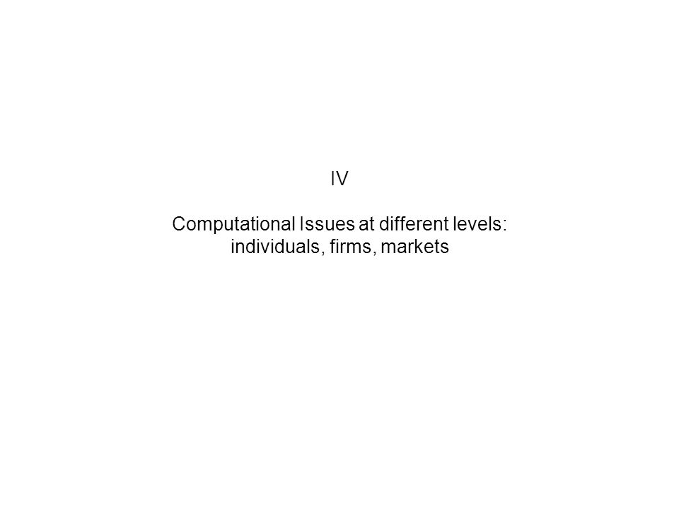 IV Computational Issues at different levels: individuals, firms, markets