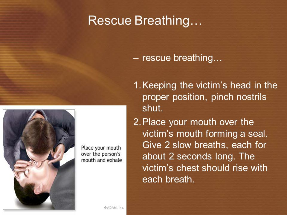 Rescue Breathing… –rescue breathing… 1.Keeping the victim's head in the proper position, pinch nostrils shut.