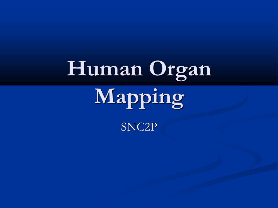 Human Organ Mapping SNC2P