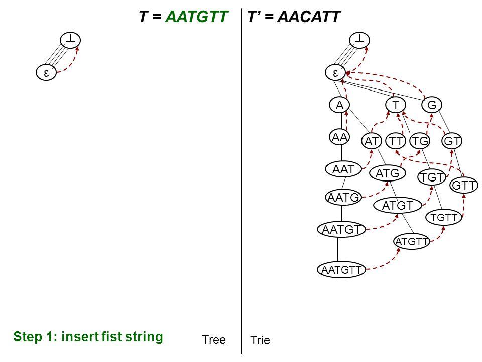 T A T = AATGTT$T' = AACATT Tree Trie A AA AAT AATG AATGT AATGTT ε ┴ ε ┴ Step 2: Traverse the prefix of T' Step 3: Start inserting the rest of T' T AT ATG TG G ATGT TGT GT ATGTT TGTT GTT TT - active point T:2,∞ A T:3,∞ T:4,∞ T G T:6,∞ T G T:7,∞ $ $ AAC AC C T':3,∞ C T C C AACA ACA CA - end point AACAT ACAT CAT ATT G T':6,∞ T Crucial bit coming.