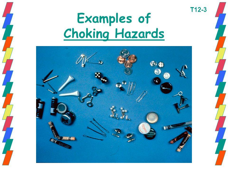 Examples of Choking Hazards T12-3