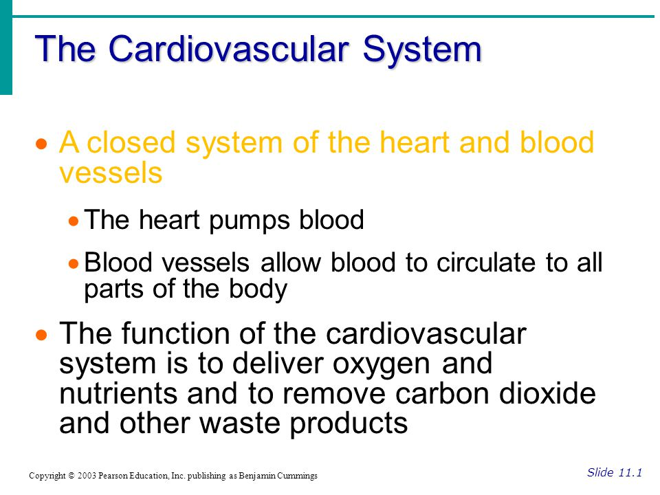 The Cardiovascular System Slide 11.1 Copyright © 2003 Pearson Education, Inc.