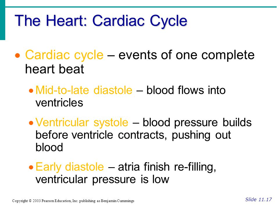 The Heart: Cardiac Cycle Slide 11.17 Copyright © 2003 Pearson Education, Inc.