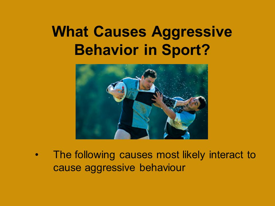 What Causes Aggressive Behavior in Sport.