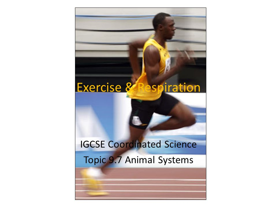 Learning Objectives Understand why exercise changed breathing and pulse rate.