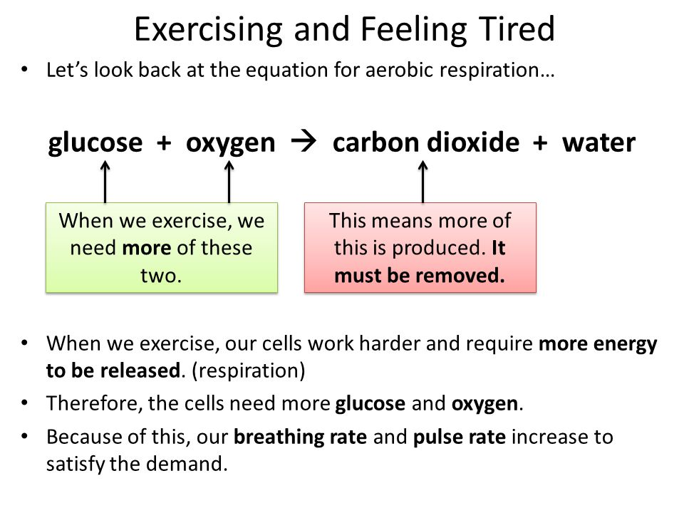 1.Cells need more glucose + oxygen for respiration 2.