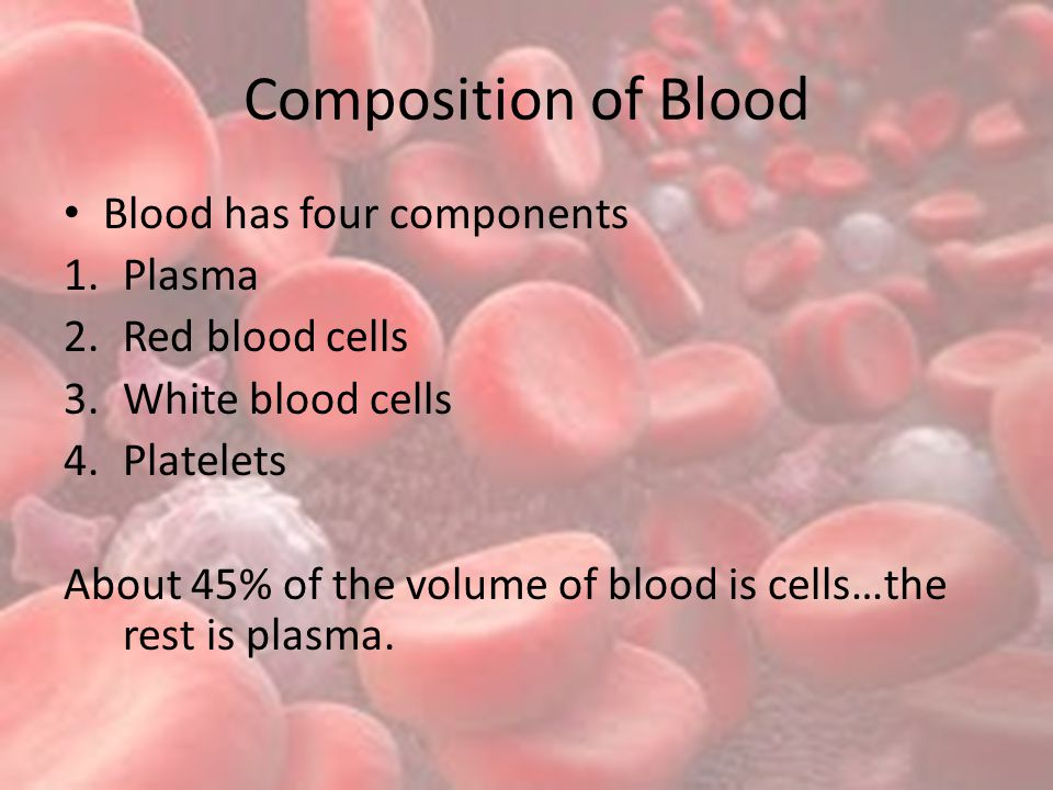 Composition of Blood Blood has four components 1.Plasma 2.Red blood cells 3.White blood cells 4.Platelets About 45% of the volume of blood is cells…the rest is plasma.