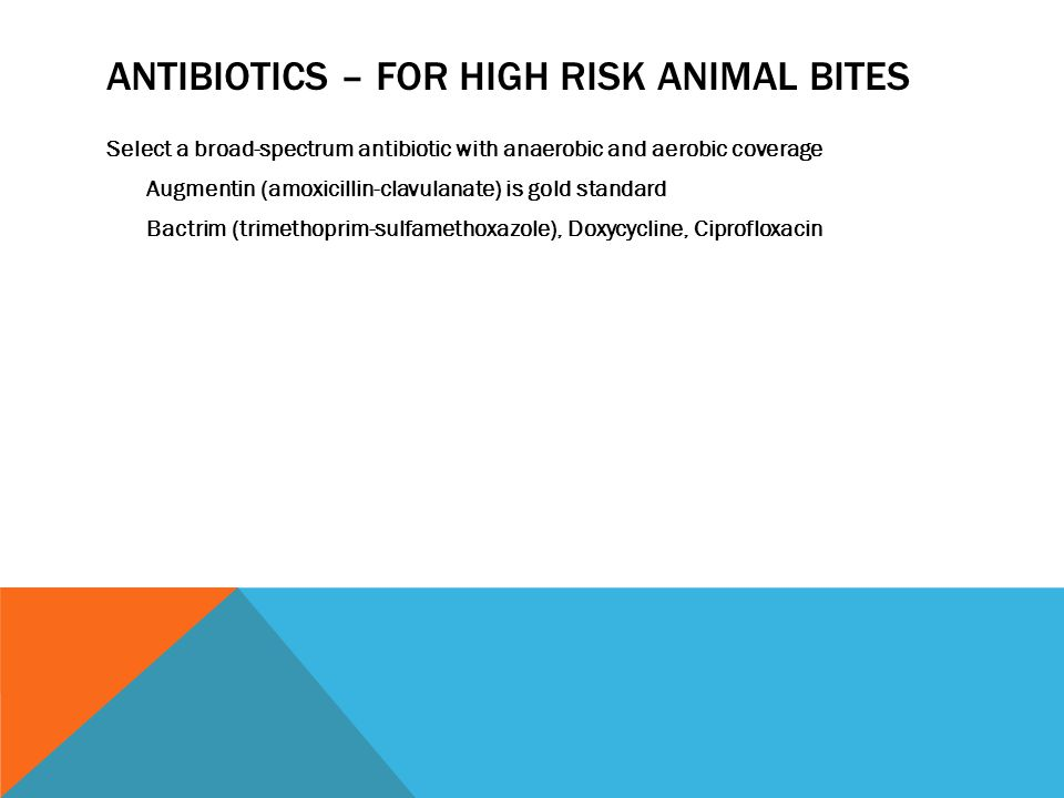 ANTIBIOTICS – FOR HIGH RISK ANIMAL BITES Select a broad-spectrum antibiotic with anaerobic and aerobic coverage Augmentin (amoxicillin-clavulanate) is gold standard Bactrim (trimethoprim-sulfamethoxazole), Doxycycline, Ciprofloxacin