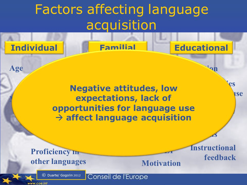 Factors affecting language acquisition Socio-economic status Classroom culture Literacy orientations Motivation Opportunities for language use Learning style Cognitive development Interaction Age Individual Familial Educational Interaction Experienced Discrimination Teacher expectations Proficiency in other languages Instructional feedback Motivation Attitudes towards L1 Negative attitudes, low expectations, lack of opportunities for language use  affect language acquisition Negative attitudes, low expectations, lack of opportunities for language use  affect language acquisition