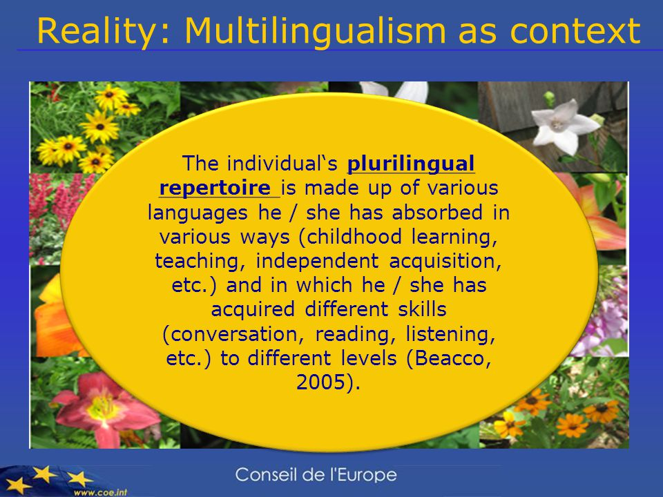 Reality: Multilingualism as context The individual's plurilingual repertoire is made up of various languages he / she has absorbed in various ways (childhood learning, teaching, independent acquisition, etc.) and in which he / she has acquired different skills (conversation, reading, listening, etc.) to different levels (Beacco, 2005).