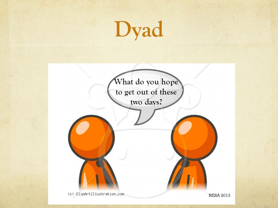 Dyad What do you hope to get out of these two days? NESA 2013