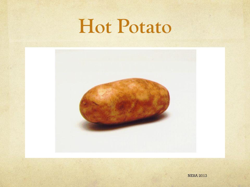 Hot Potato NESA 2013