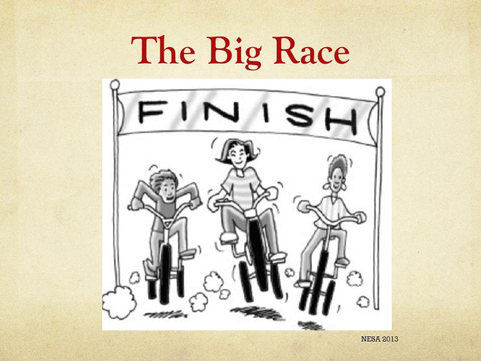 The Big Race NESA 2013
