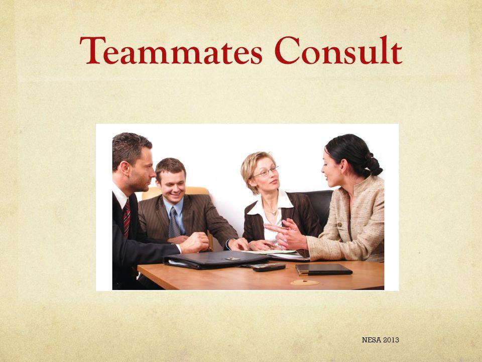 Teammates Consult NESA 2013