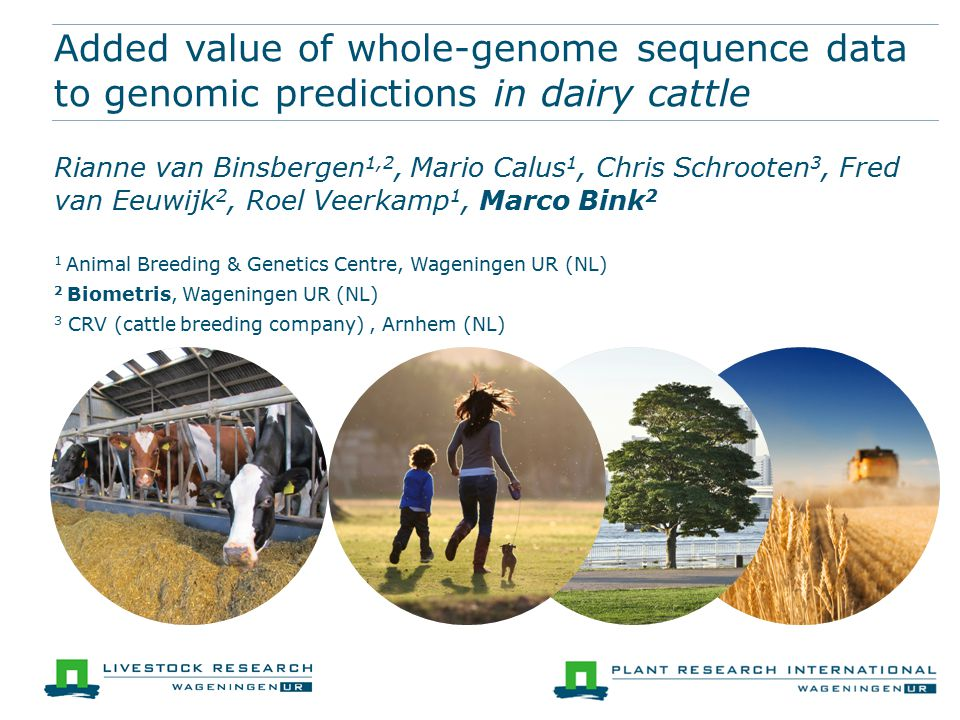 Added value of whole-genome sequence data to genomic predictions in dairy cattle Rianne van Binsbergen 1,2, Mario Calus 1, Chris Schrooten 3, Fred van Eeuwijk 2, Roel Veerkamp 1, Marco Bink 2 1 Animal Breeding & Genetics Centre, Wageningen UR (NL) 2 Biometris, Wageningen UR (NL) 3 CRV (cattle breeding company), Arnhem (NL)